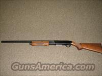 BROWNING BPS 20 GA   Browning Shotguns > Pump Action > Hunting