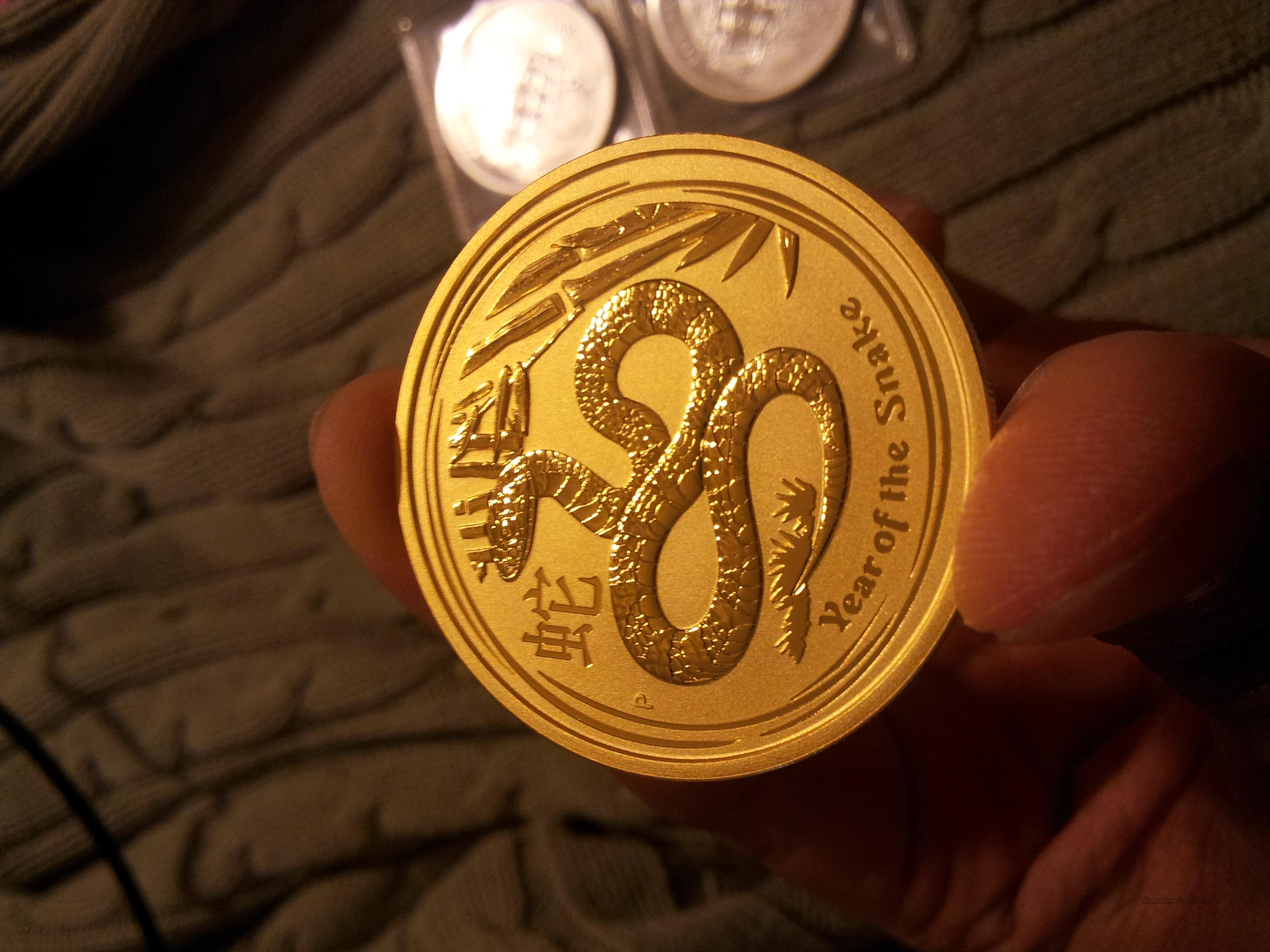2013 2 oz Gold Year of the Snake Coin (Series II)  Non-Guns > Coins