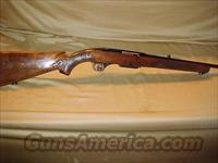 Winchester Model 100 rifle in 243 caliber  Guns > Rifles > Winchester Rifles - Modern Bolt/Auto/Single > Autoloaders