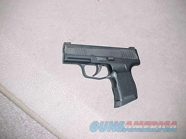 SIG SAUER P-365  9MM  Guns > Pistols > Sig - Sauer/Sigarms Pistols > P365