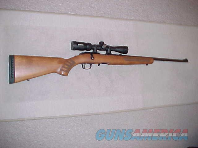RUGER AMERICAN RF-W 22LR SCOPED  Guns > Rifles > Ruger Rifles > American