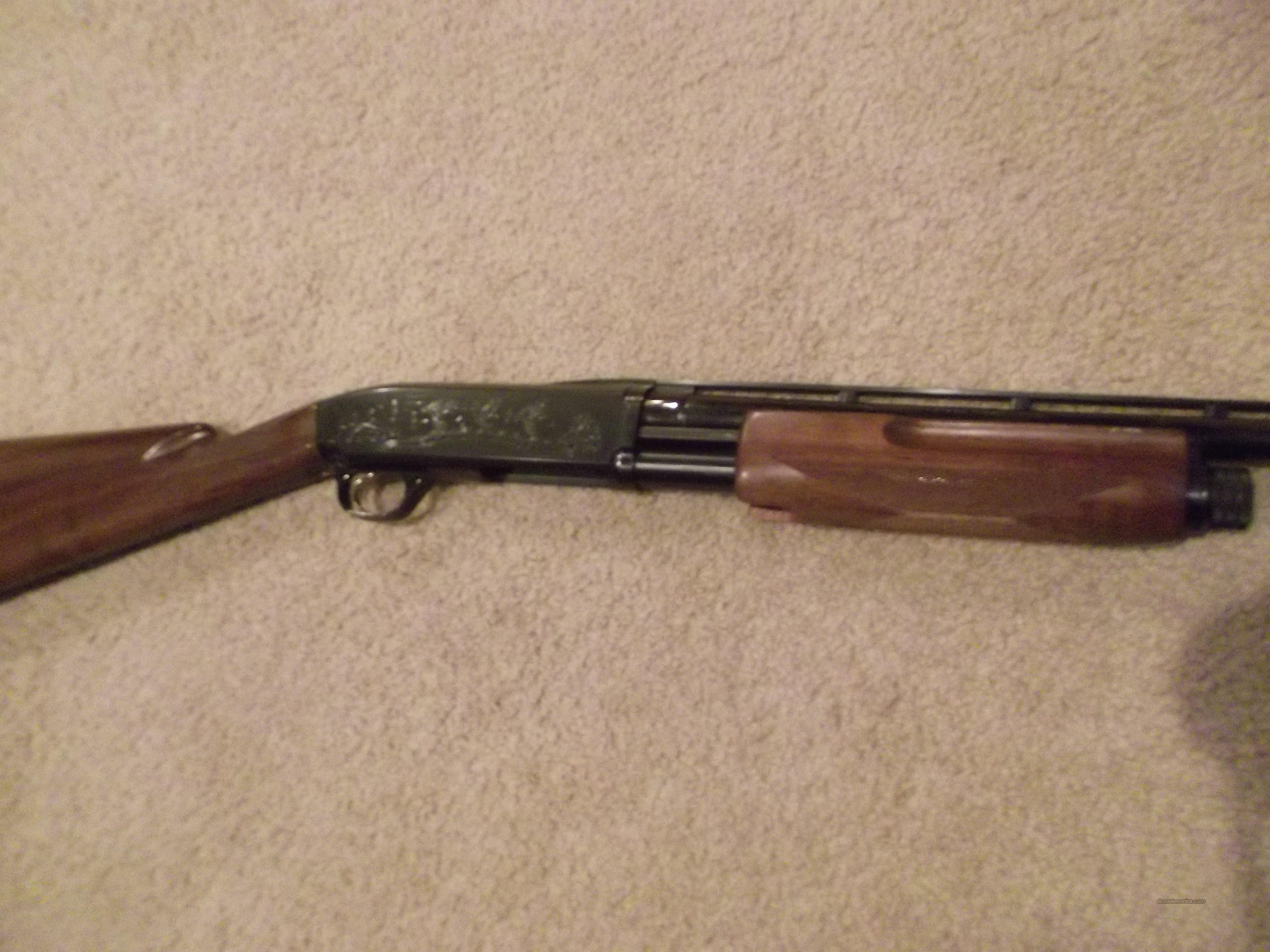 Browning BPS Upland Deluxe  Guns > Shotguns > Browning Shotguns > Pump Action > Hunting
