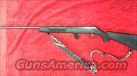Savage Model 94 22LR  Guns > Rifles > Savage Rifles > Other