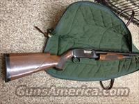 "Winchester Model 12 pump, 12 gauge( 3"" / 30"" )  Winchester Shotguns - Modern > Pump Action > Hunting"
