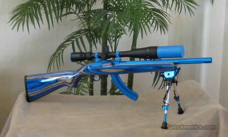 Custom Ruger 10 22 Rifle 22lr For Sale