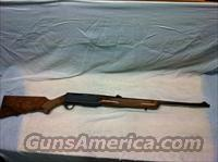 Browning BAR 243  Guns > Rifles > Browning Rifles > Semi Auto > Hunting