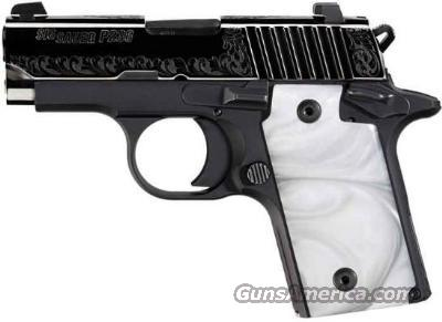 Sig Sauer P238 Special Two-Tone Beauty!  Guns > Pistols > Sig - Sauer/Sigarms Pistols > P238