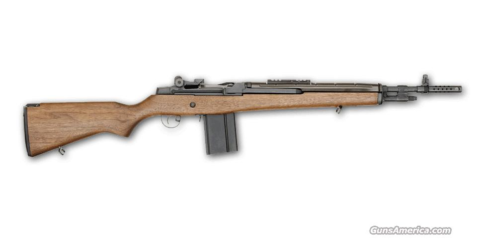 Don't Pass this M1A Up! Springfield M1A Scout Squad/Walnut (MA9122)  Guns > Rifles > Springfield Armory Rifles > M1A/M14
