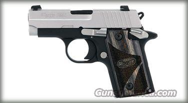 SIG P238 380ACP DUO TONE NS BLACKWOOD GRIPS 1 6RD   Guns > Pistols > Sig - Sauer/Sigarms Pistols > P238