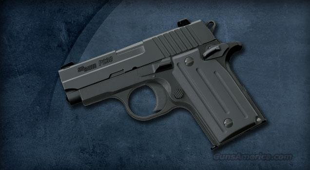 SIG SAUER P238 6 + 1 380 ACP w/Fixed Sights & Black Finish  Guns > Pistols > Sig - Sauer/Sigarms Pistols > P238