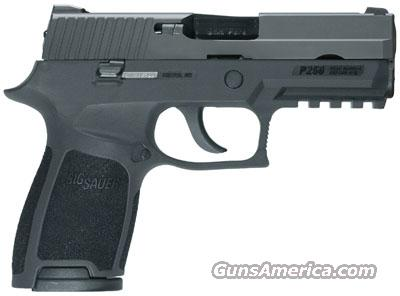 Sig Sauer P250 Compact in .40 S&W NITRON  Guns > Pistols > Sig - Sauer/Sigarms Pistols > P250
