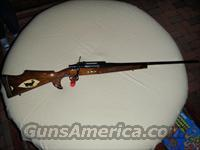 Winslow Arms Crown Grade .300WM rifle  Guns > Rifles > Custom Rifles > Bolt Action