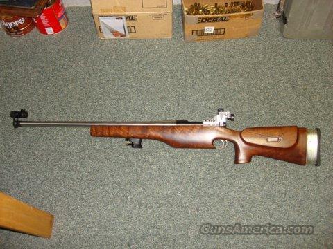 Varmint Rifle/Tactical  Guns > Rifles > Tactical/Sniper Rifles