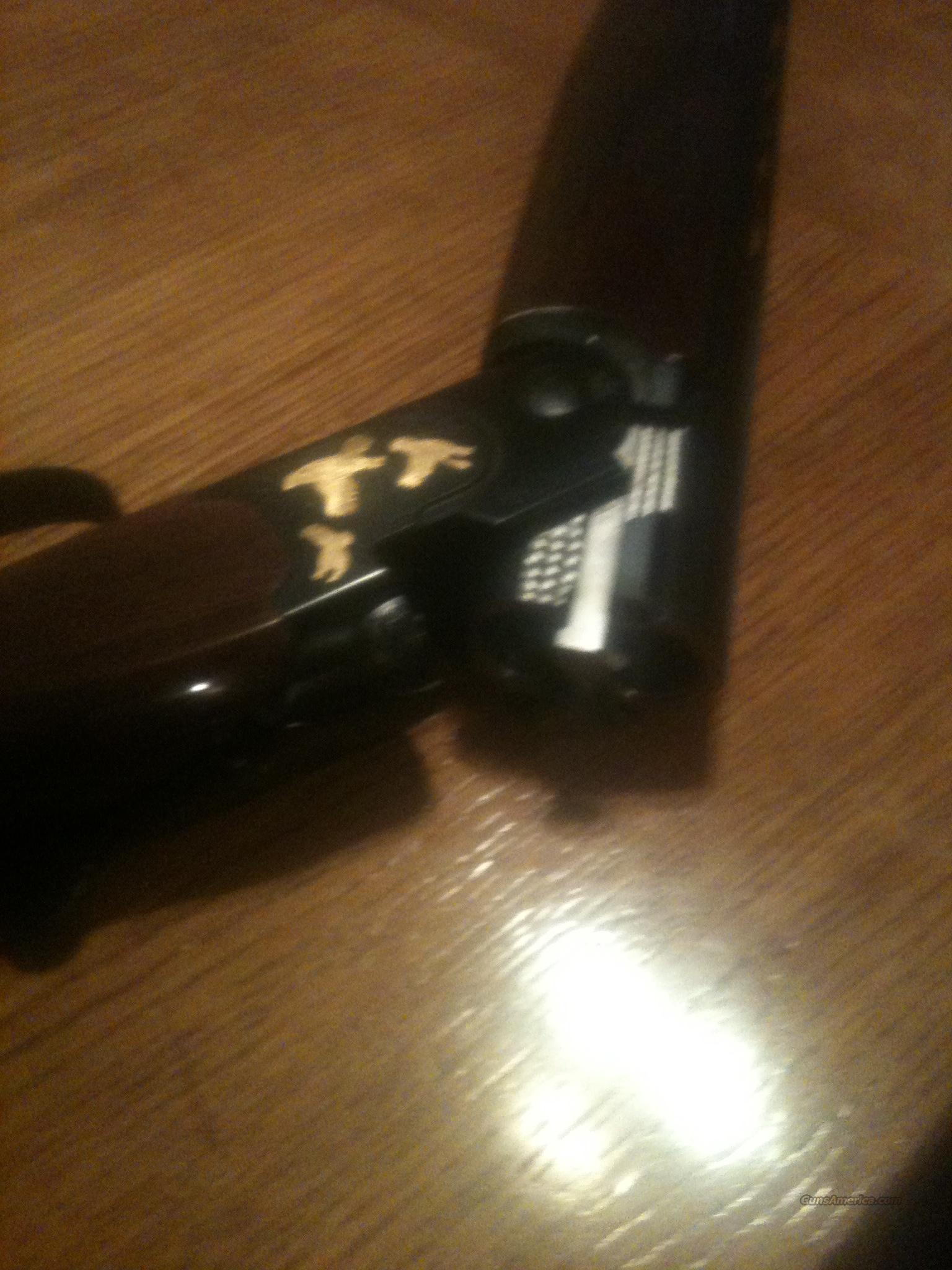 Beretta 20ga 686 covey quail  Guns > Shotguns > Beretta Shotguns > O/U > Hunting