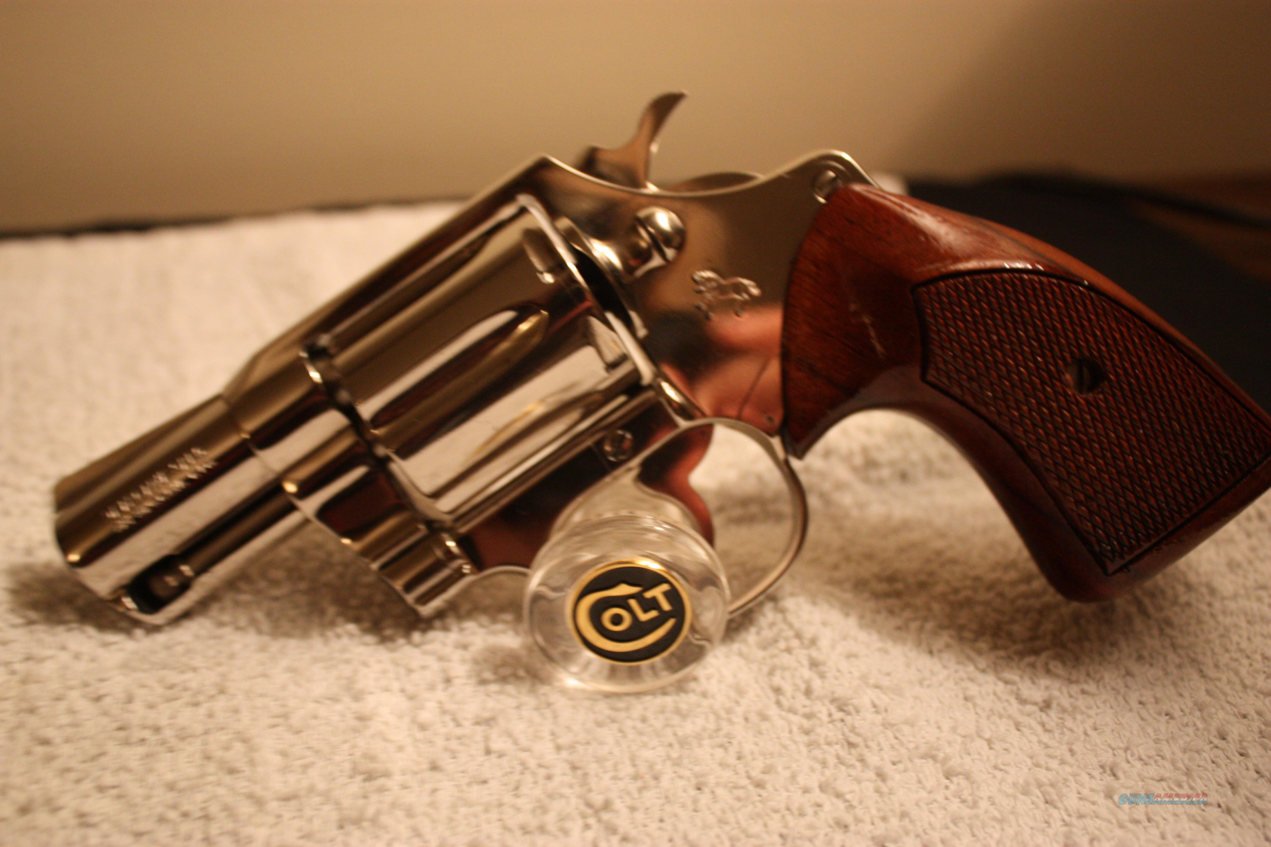 Colt Detective Special- NICKEL  Guns > Pistols > Colt Double Action Revolvers- Modern
