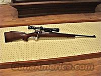 Custom Mauser in 257 Roberts  Guns > Rifles > Mauser Rifles > German