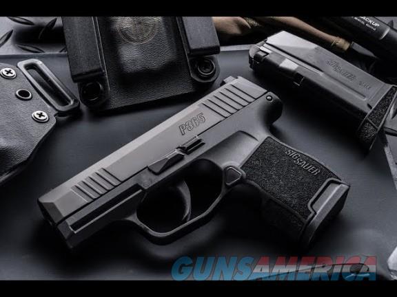 Sig P365 w/extra 12 rd. mag  Guns > Pistols > Sig - Sauer/Sigarms Pistols > P365