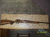 Weatherby Vanguard 300 mag  Guns > Rifles > Weatherby Rifles > Sporting