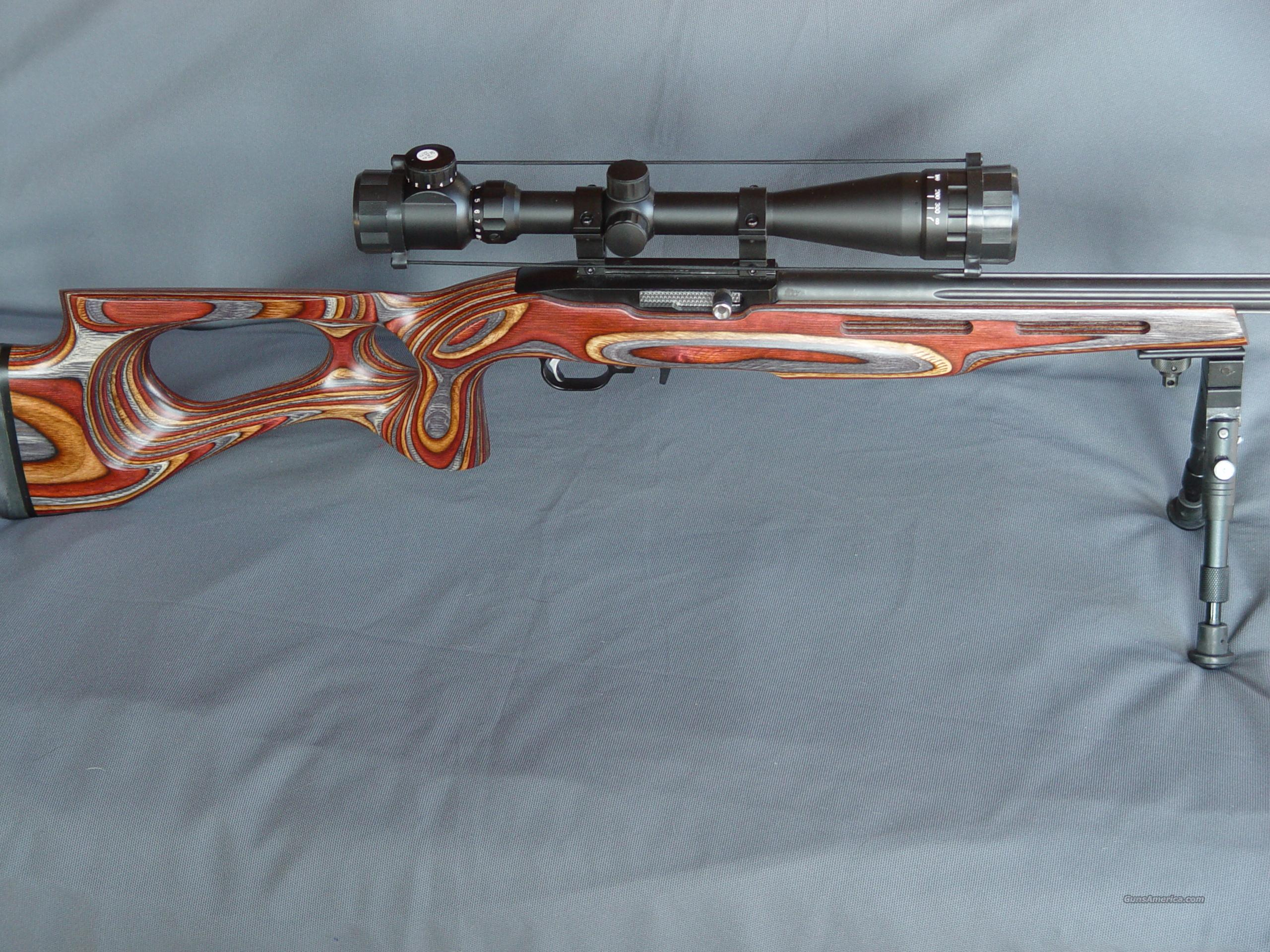 Ruger 10/22 Custom .17M2 2100 FPS  Guns > Rifles > Ruger Rifles > 10-22