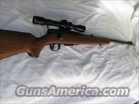 Savage 22 Hornet Model 340 Series E  Savage Rifles > Standard Bolt Action > Sporting