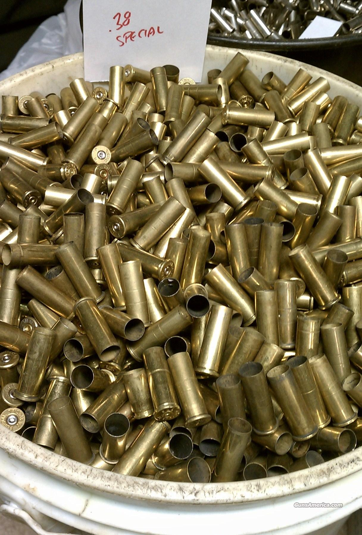 .38 Special Brass - Your choice of nickel or brass  Non-Guns > Reloading > Components > Brass