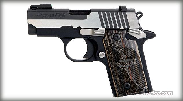 Sig Sauer P238 Equinox with Ambi Safety  Guns > Pistols > Sig - Sauer/Sigarms Pistols > P238