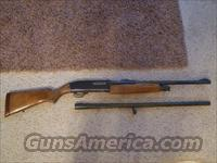 Winchester model 1200 12 gauge pump  Guns > Shotguns > Winchester Shotguns - Modern > Pump Action > Hunting