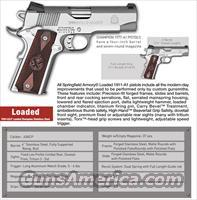 Springfield Armory Loaded Champion Stainless .45  Guns > Pistols > 1911 Pistol Copies (non-Colt)