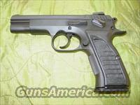 EAA Witness Basic .45 ACP  Guns > Pistols > EAA Pistols > Other