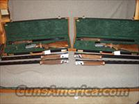 Rare consecutive serial# Rizzini Prestige 3 barrel set  Rizzini Shotguns
