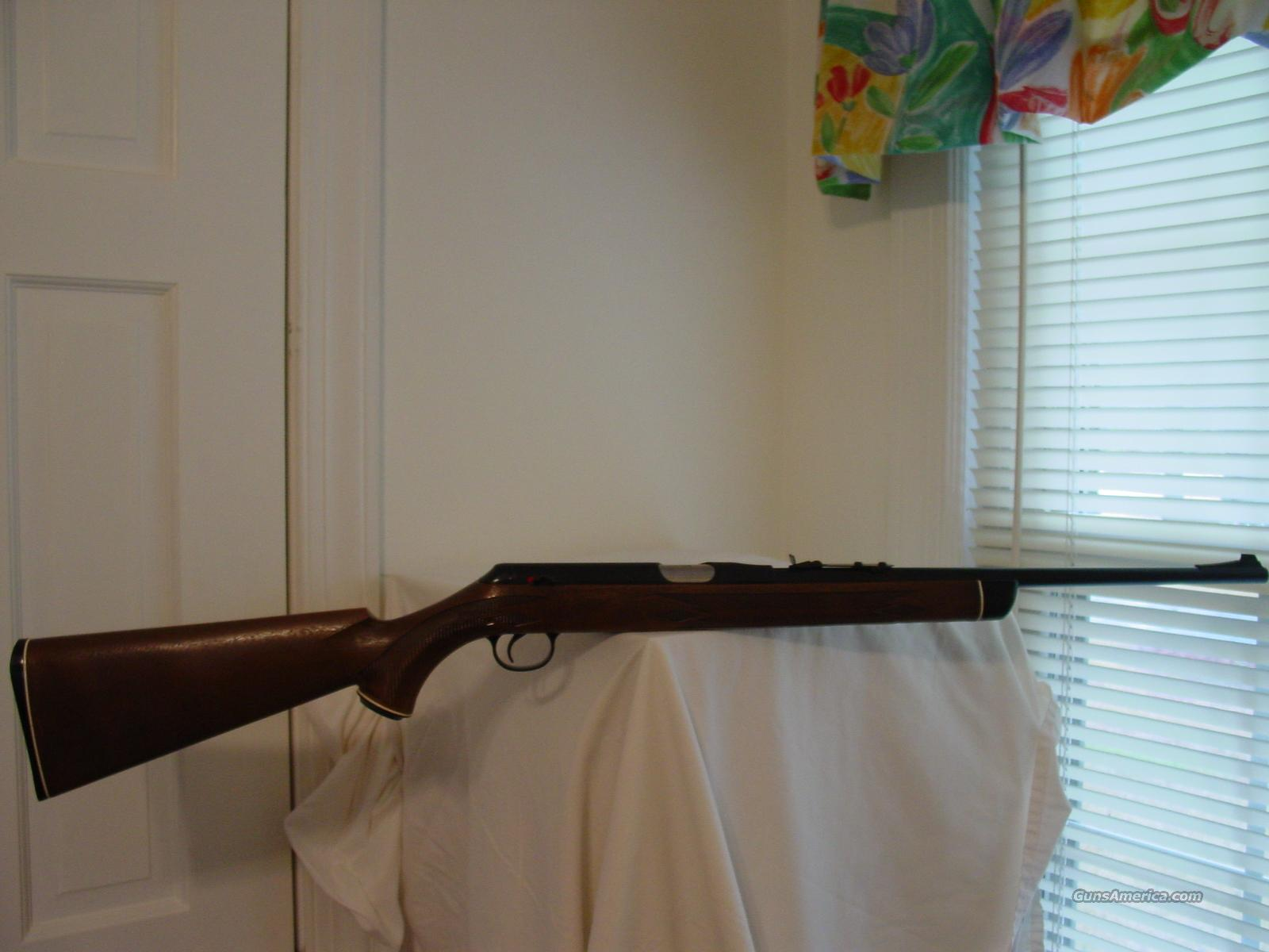 Daisy Heddon VL Rifle  Guns > Rifles > D Misc Rifles