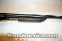Remington Model 31 16G Pump  Guns > Shotguns > Remington Shotguns  > Pump > Hunting