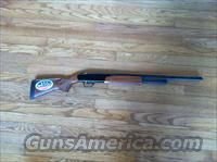Mossberg 505 410 Gauge  Guns > Shotguns > Mossberg Shotguns > Pump > Sporting
