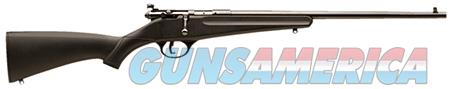 "Savage 13775 Rascal Youth Bolt 22 LR 16.10"" 1 Black Fixed Synthetic Stock Blued Carbon Steel  Guns > Rifles > Savage Rifles > Accutrigger Models"