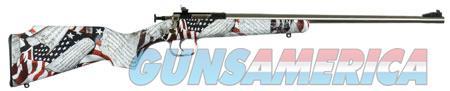 "Crickett KSA3168 Crickett  22 LR 1 16.13"" SS Blued American Flag w/Amendment Right Youth/Compact  Guns > Rifles > Crickett-Keystone Rifles"