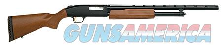 "Mossberg 54132 500 Youth Pump 20 Gauge 22"" 3"" Walnut Stk Blued Rcvr  Guns > Shotguns > Mossberg Shotguns > Pump > Sporting"