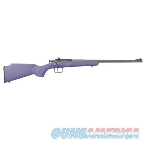 Crickett 22Lr Ss/Purple Syn KSA2307  Guns > Rifles > D Misc Rifles