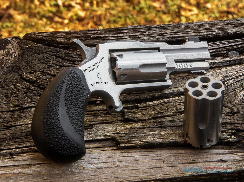 22M/22Lr Bugout Ii Ss Xs Sght NAA22MCTB  Guns > Pistols > MN Misc Pistols
