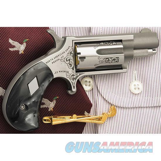 North American Arms Mini-Rev 22M Ss Dad Tl NAA-22MS-DAD  Guns > Pistols > North American Arms Pistols