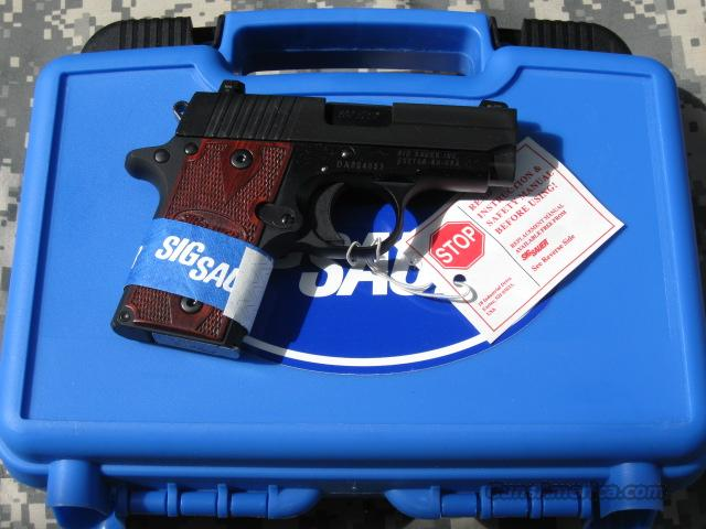 SIG P238 380 AUTO, NITRON,NIGHT SIGHTS,ROSEWOOD GRIPS  Guns > Pistols > Sig - Sauer/Sigarms Pistols > Other