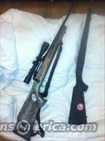 Savage Model 11 in .308 custom stock  Guns > Rifles > Savage Rifles > Accutrigger Models > Sporting