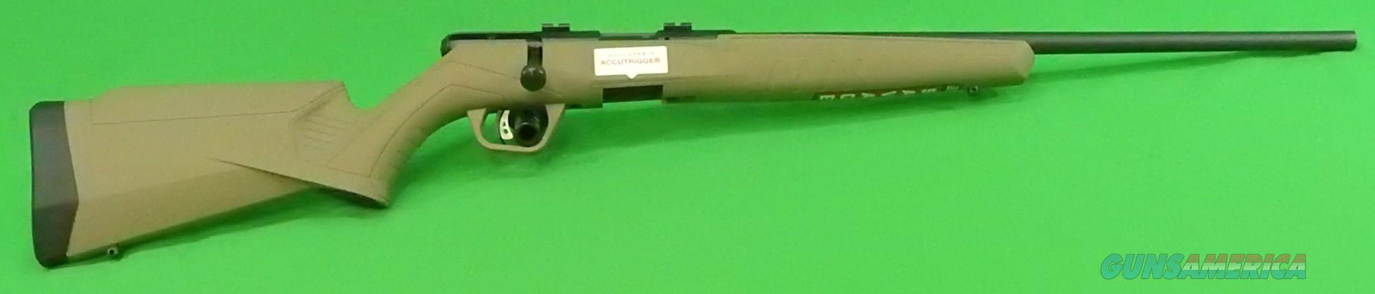 B17 FDE Syn 17HMR 21In  70815  Guns