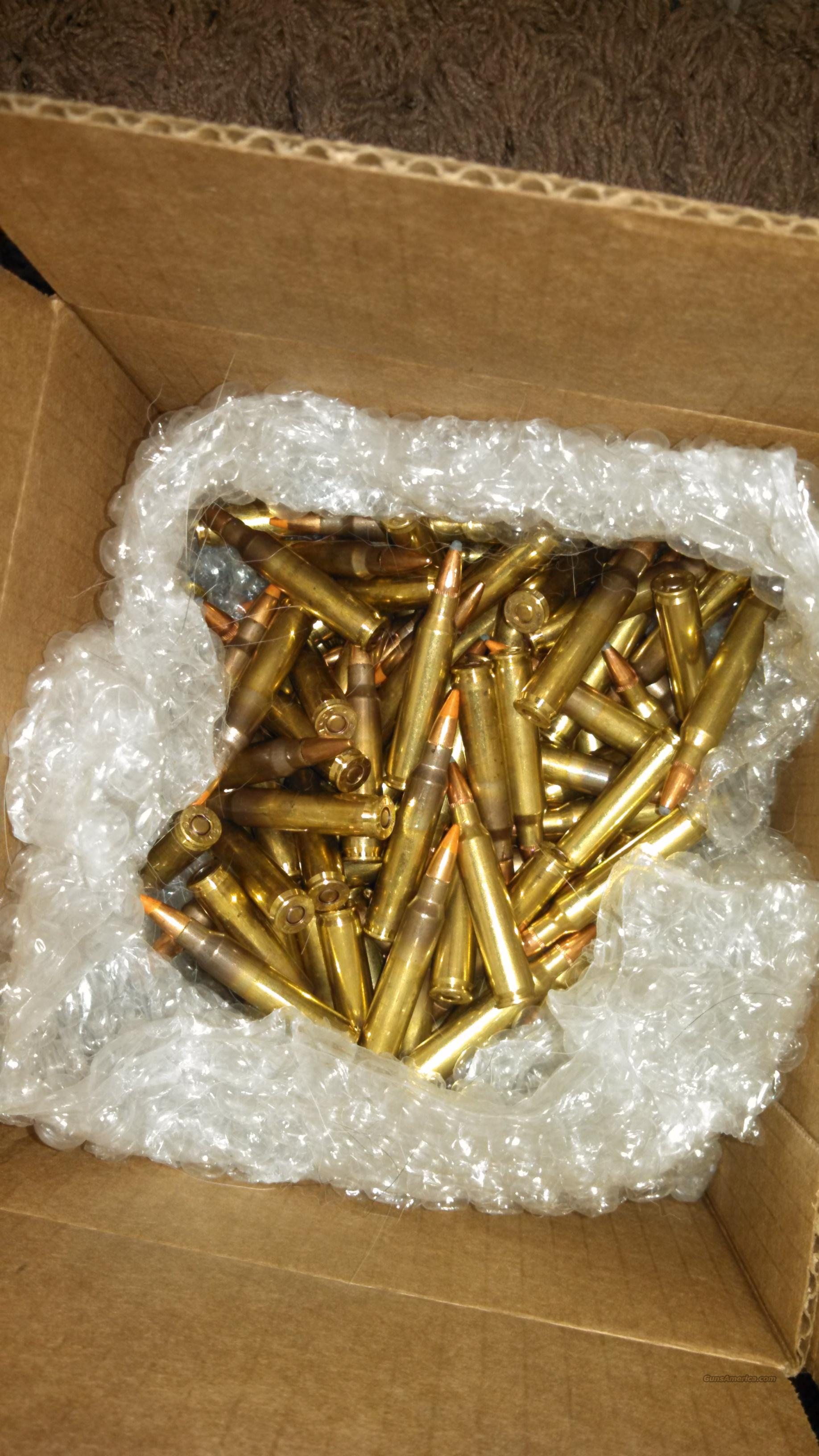 223 ammo mix of tracers, fmj, and zombie rounds  Non-Guns > Ammunition