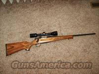 REMINGTON MODEL 7 IN 243 CAL  Guns > Rifles > Remington Rifles - Modern > Bolt Action Non-Model 700 > Sporting