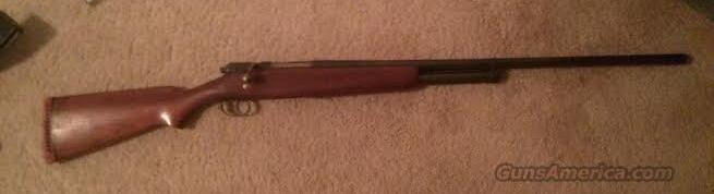 12 Gauge Bolt Action Shotgun - JC Higgins  Guns > Shotguns > JC Higgins Shotguns
