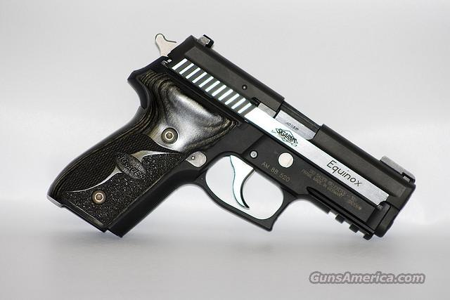 Sig Sauer P229 Equinox in .40 cal   Guns > Pistols > Sig - Sauer/Sigarms Pistols > P229