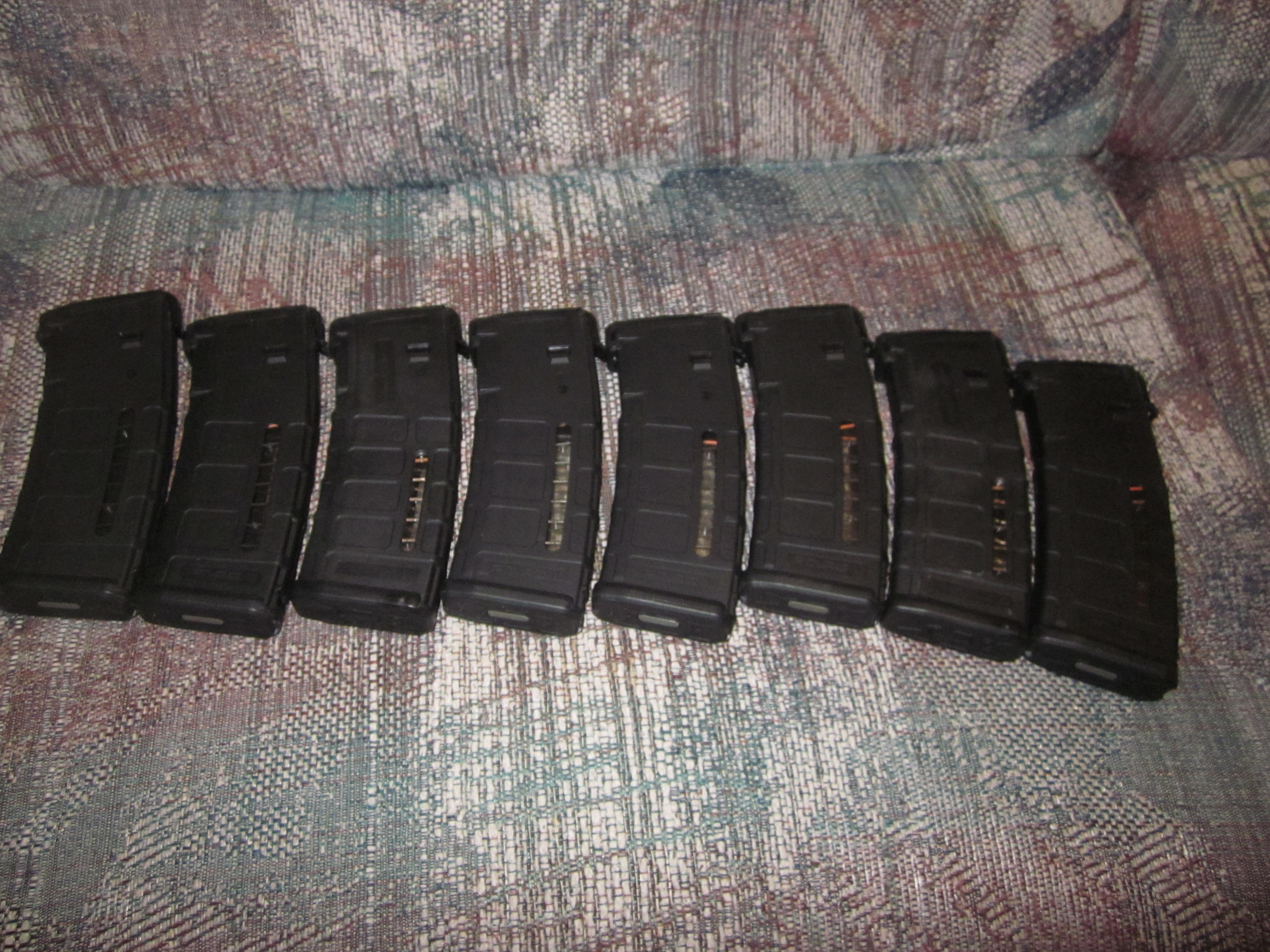 (8) Windowed P-Mags  Non-Guns > Magazines & Clips > Rifle Magazines > AR-15 Type