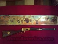 Winchester Antlered Game Model 94  Guns > Rifles > Winchester Rifles - Modern Lever > Model 94 > Post-64