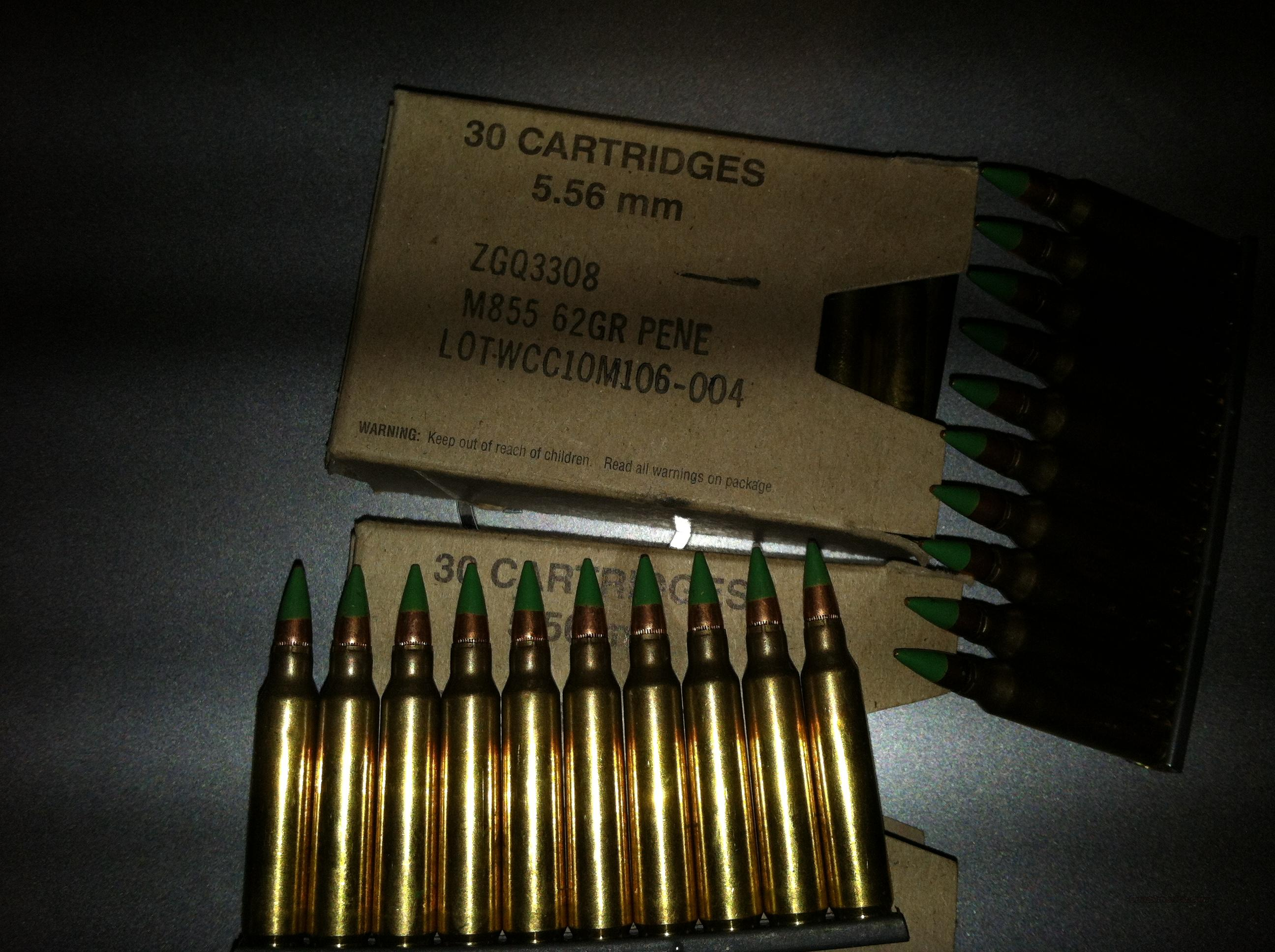 5.56 62 Gr SS109 M855 on stripper clips  Non-Guns > Ammunition