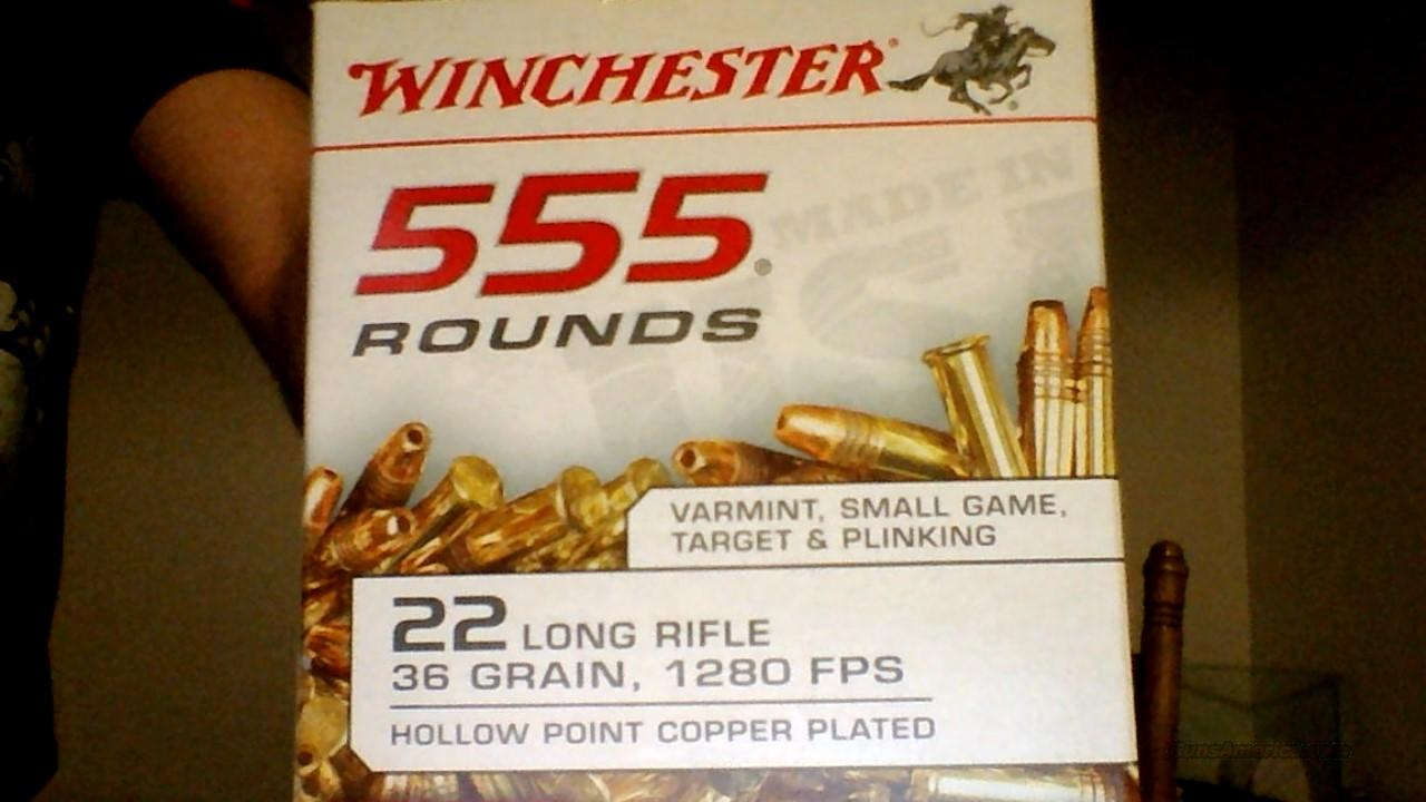 22 LR 36grain 1280 FPS  555 rounds  Non-Guns > Ammunition